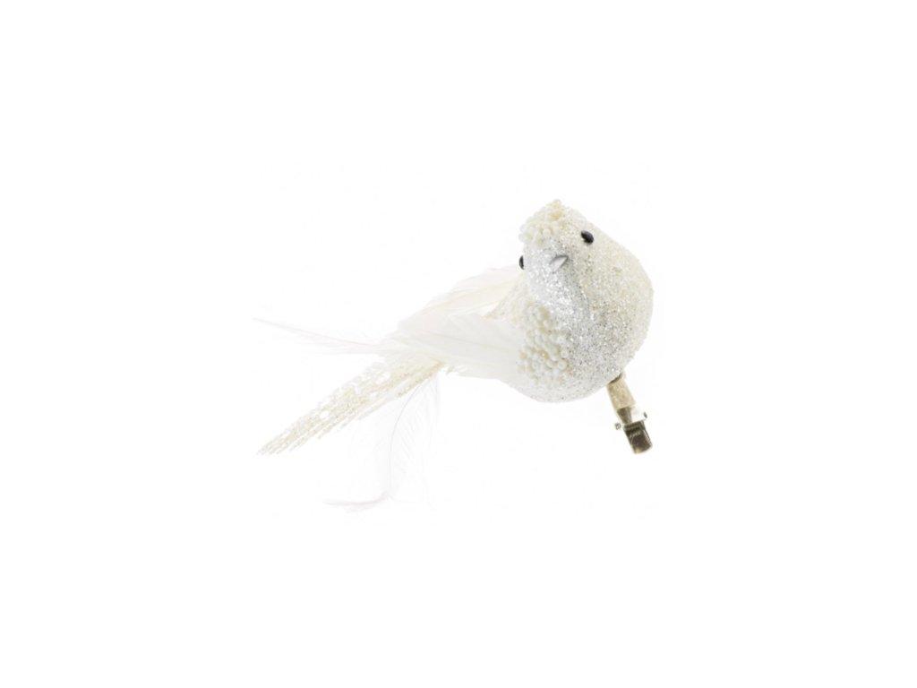 vtáčik biely štipec ligot.