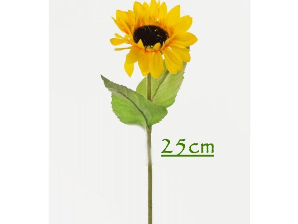 1500217 slnečnica 25cm