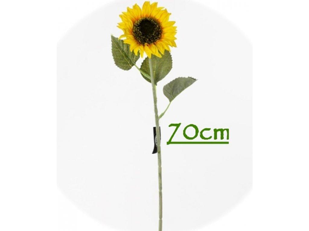97307 slnečnica 70cm