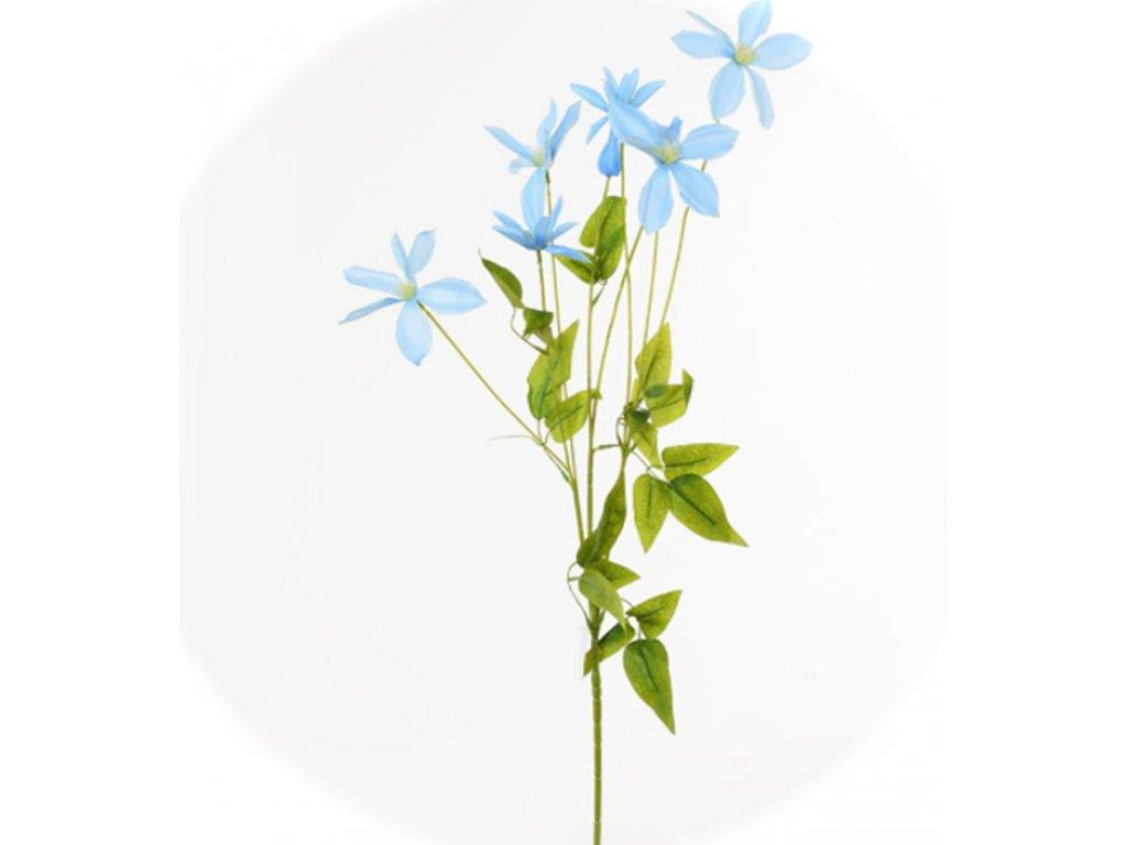 1101017 klematis 90cm modrý